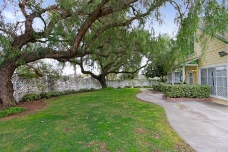 houses for rent in san marcos ca house and television bqbrasserie com