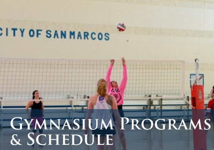 Gymnaisum Program