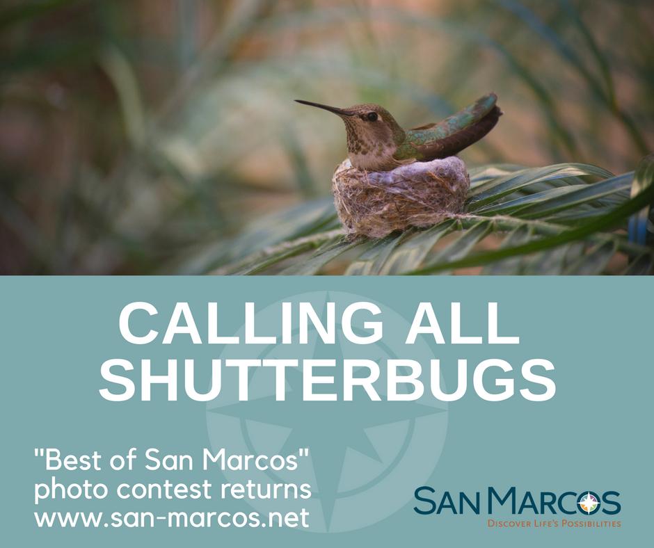 Best of San Marcos photo contest returns through Feb. 26