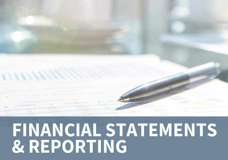 Financial Statements & Reporting