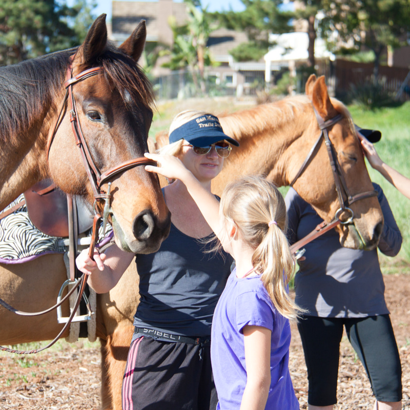 Equestrian Riders - petting horse