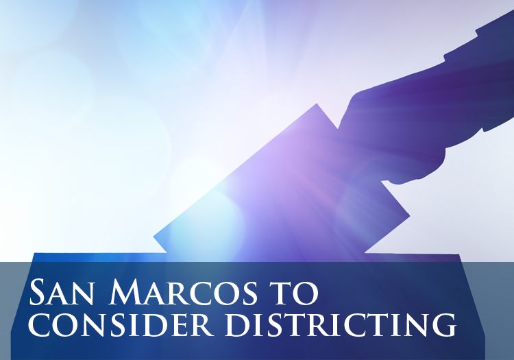 Districting Web Icon