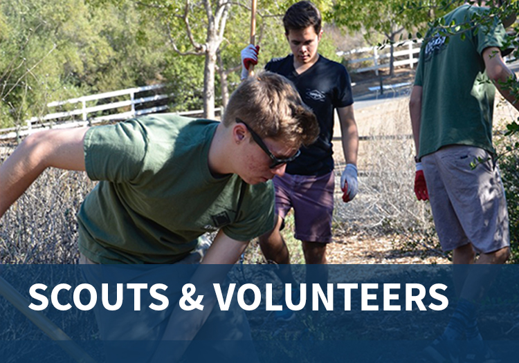 Scouts and Volunteers